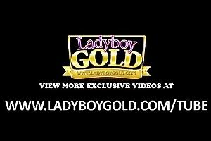 Busty Ladyboy Big Dick Bareback Fuckfest
